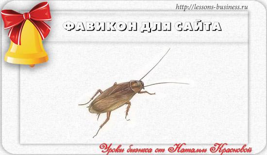 favicon-saita