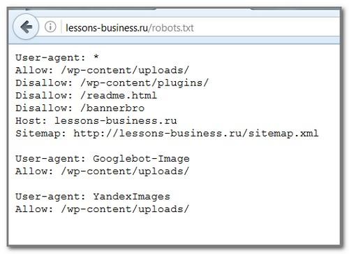 Правильный robots.txt для wordpress или как закрыть от индексации ненужные страницы и избежать дублей и санкций